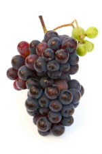 FreeGreatPicture.com-8717-high-resolution-photo-grape